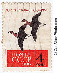 RUSSIA - CIRCA 1962 : stamp printed by Russia, shows wild...
