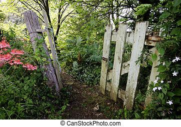 An old vintage gate in the garden - A grunge wooden door....