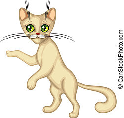 Cute kitten standing