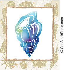 Color seashell in a frame