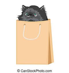 nice persian cat in paper bag