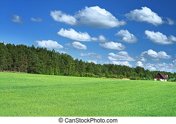 little house in grass field, cumulus clouds above
