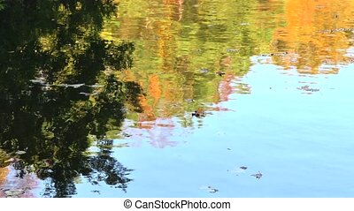 autumn lake reflection - Cropped to only include the...