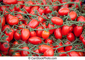 Bunches of fresh ripe red cherry tomatoes close-up - Bunches...