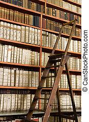 bibliotek, Fyllda, åldrig, böcker, stege