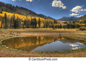 Lockett Meadow 2 - Wilderness area in the high country of...