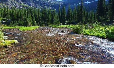 Sprague Creek Glacier National Park - Melting waters from...