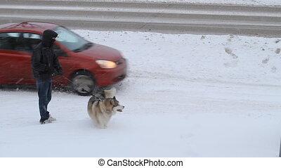 Man and Eskimo dog