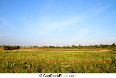 Rural landscape in country side, Thailand
