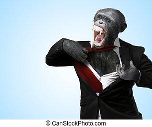 Annoyed Monkey Shouting On Turquoise Background
