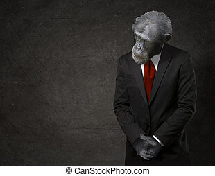 Business Monkey In Formal Attire On Black Background