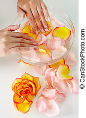 Nail care - Female holding her hands in water with floral...