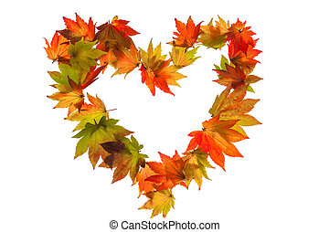 höst, hjärta, bladen, form, färgrik
