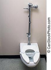 Sanitized Toilet