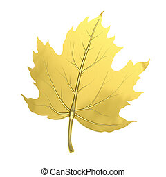 Golden maple leaf - Single golden maple leaf isolated on...