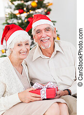 Smiling old couple swapping christmas gifts