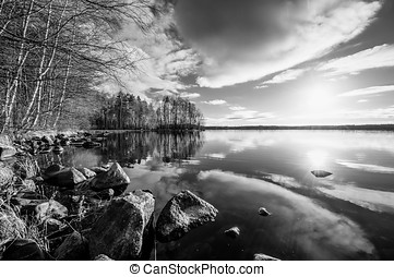Black and White Landscape - Trees reaching to the sun at...