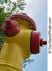 New Fire Hydrant - An upward view of a freshly painted red...