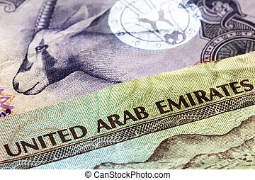 UAE Currency Closeup - United Arab Emirates dirham banknotes...