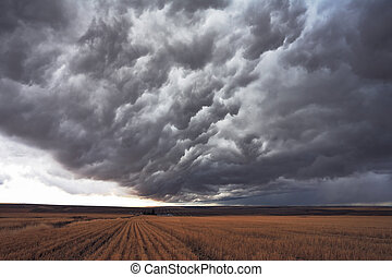 The enormous storm cloud - The harvest in the fields of...