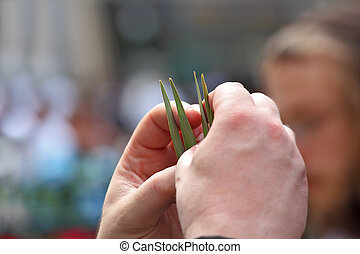 Beautiful mans hands hold lulav - Jewish autumn holiday of...