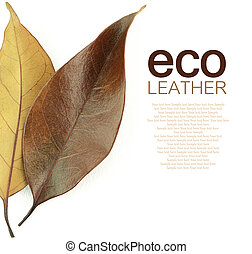 Eco leather concept. Brown autumn leaf on white background