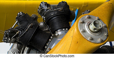 Cylinder Head - The engine in a Boeing Stearman PT-17