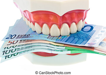 dental model with euro notes