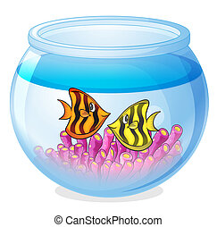 a water bowl and a fish