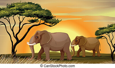 Elephant under a tree - illustration of a Elephant standing...
