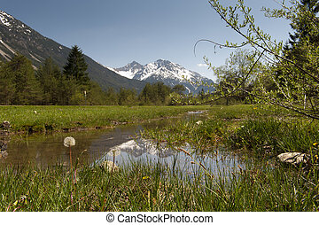 Tirolo,  gras, montagne, natura, fiori, acqua, prati, paesaggio, bello