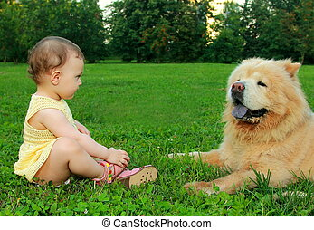 Fun baby girl in dress sitting near dog on grass and looking...