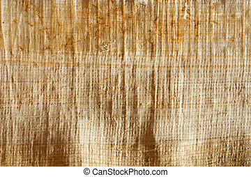Natural papyrus background and texture