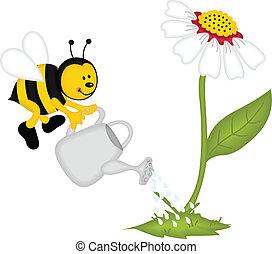 Bee watering flower