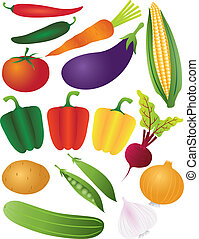 Vegetables Illustration Isolated on White Background -...