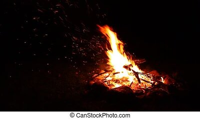 Camp Fire Background - Flames of a cozy campfire flicker in...