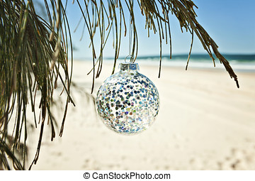 a glass christmas ball hangs from a tree at the beach