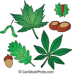 Leaves and fruits - vector illustration.
