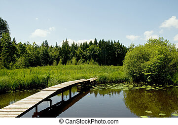bridge at a lake - little wooden bridge at a lake in the...