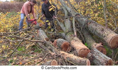 sawed, tree - male, sawed, tree