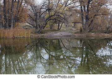 autumn lake reflections - lake reflections - gravel pit...