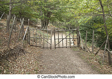 Wooden gate - Rustic wooden gate along path in the forest