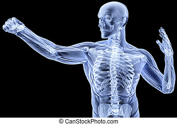 body - man doing a punch under X-rays isolated on black