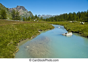 Alpe Devero, views of the river and forest - View of Devero...