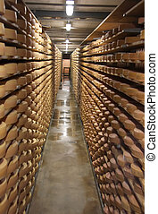 Cheese storage - Round stacks of cheese stored on shelves in...