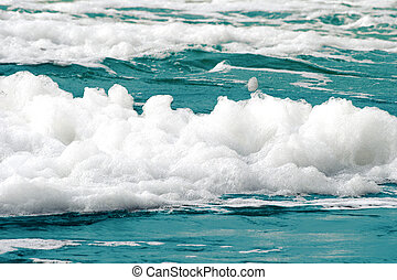 Sea foam - White foam on a sea water surface