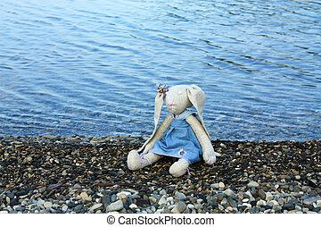 Baby doll - Rag doll, left on the sea beach