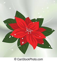 Poinsettia - vector background with Christmas Poinsettia
