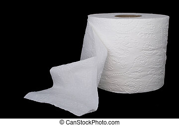 Toilet Paper - A new roll of white 2 ply toilet paper.