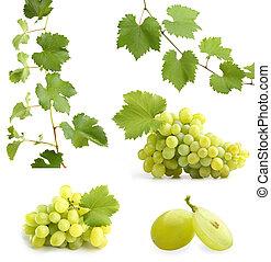 verde, videira, folhas, uvas, colagem